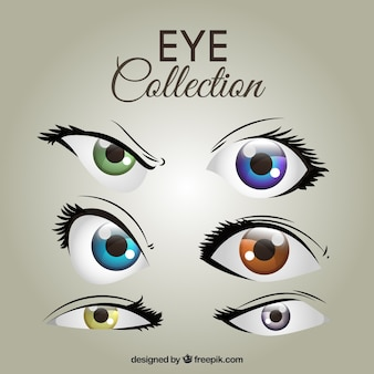 Collection of colorful female eyes