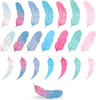 Collection of colorful watercolor feathers, pink blue palette