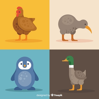 Collection of cute cartoon birds