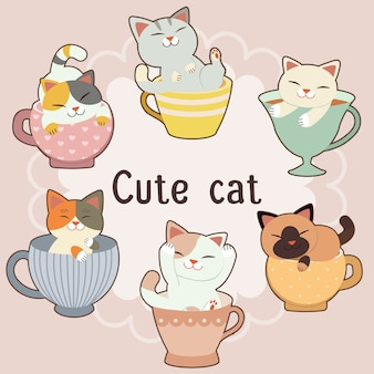 The collection of cute cat in big tea cup set.