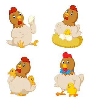 Collection of cute chicken with various posing