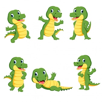 Collection of cute crocodile character cartoon