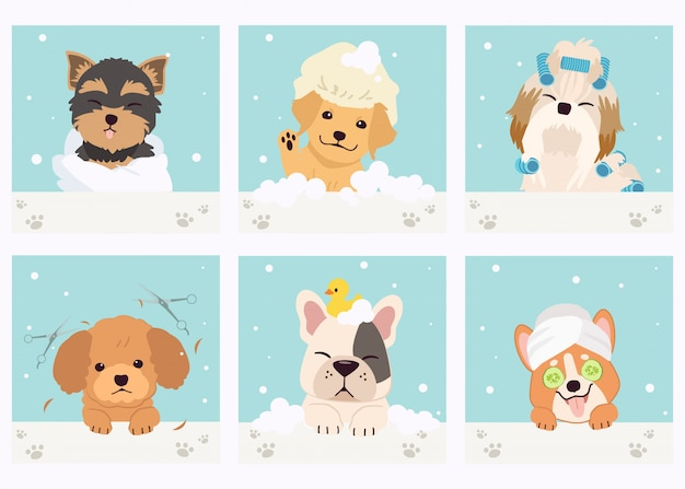 The collection of cute dog with spa and salon theme in flat vector style