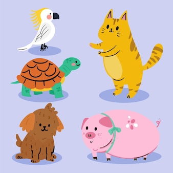 Collection of cute domestic pets