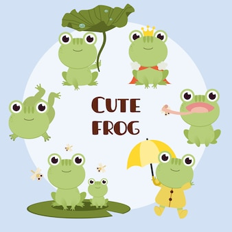 The collection of cute frog with any action. the character of cute frog sitting on lotus leaf and king and frog wear rain coat.