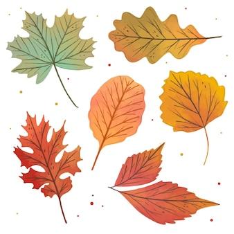 Raccolta di foglie disegnate a mano carino