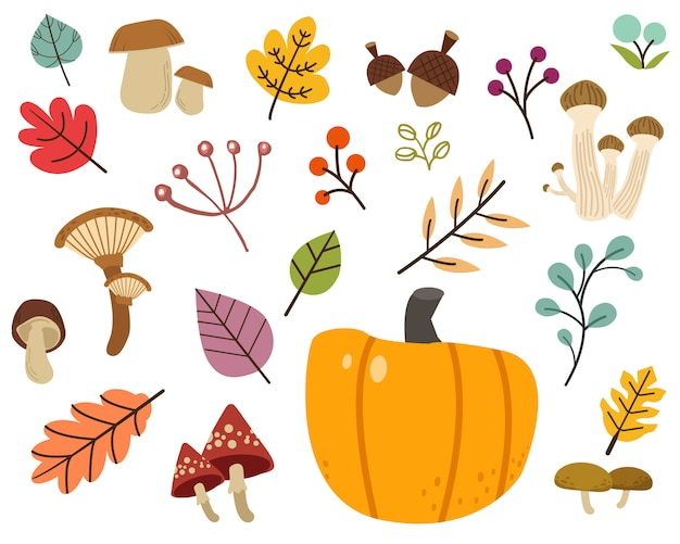 The collection of cute leaves , mushroom in flat vector style