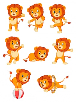 Collection of cute lion character cartoon