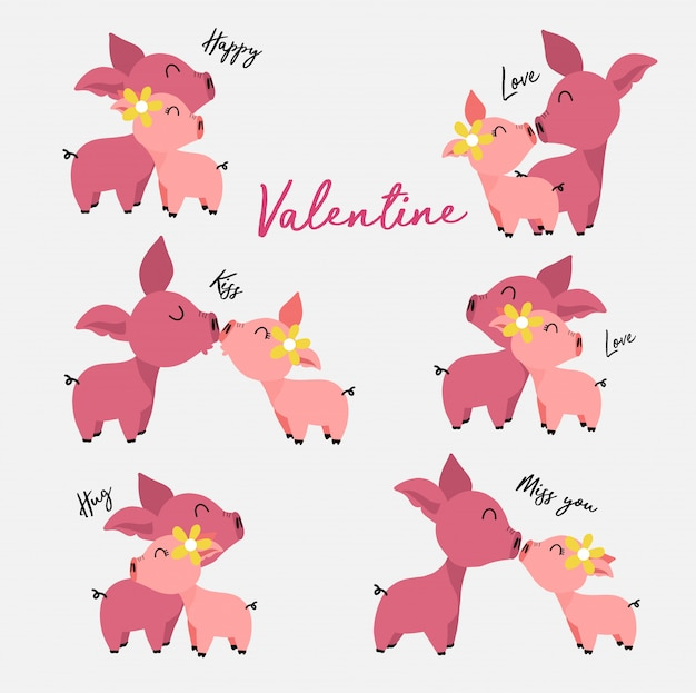 Collection cute male and female pigs in love