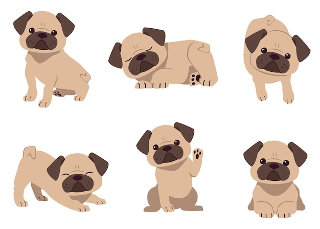The collection of cute pug dog
