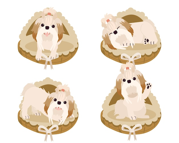 A collection of cute shih tzu on a mattress basket or dog bed