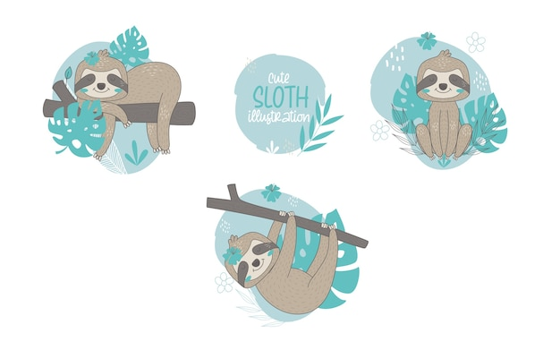 Collection of cute sloths cartoon animals. vector illustration.