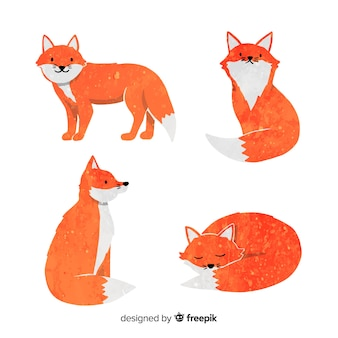 Collection of cute watercolor foxes