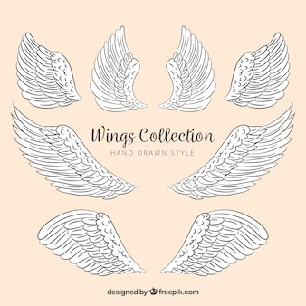 Collection of decorative hand-drawn wings