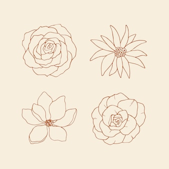 Collection of decorative sketch flowers