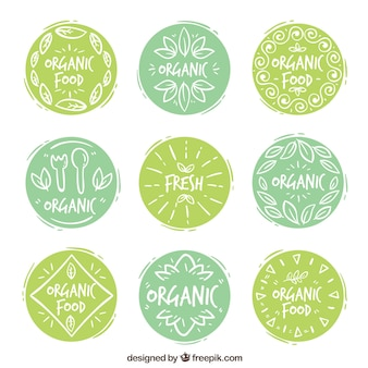 Collection of decorative stickers with hand-drawn organic food