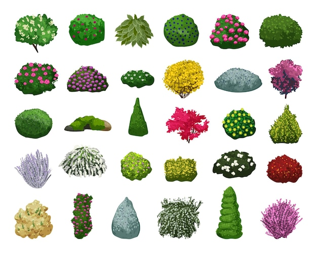 Collection of detailed bushes