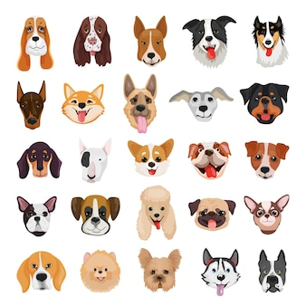 Collection of detailed purebred dogs
