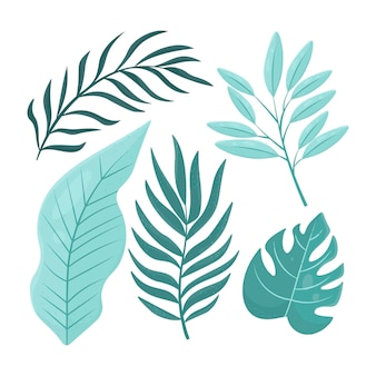 Collection of different flat design leaves