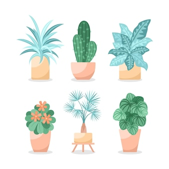 Collection of different green houseplants