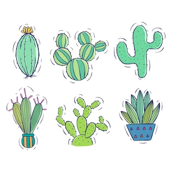 Collection of doodle cactus with pot on white