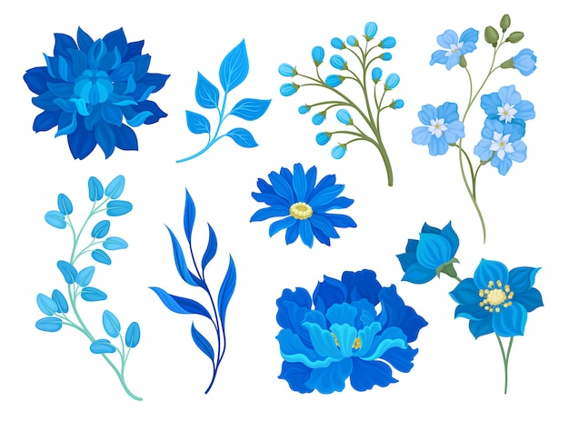 Collection of drawings of blue flowers and leaves.  illustration on white background.