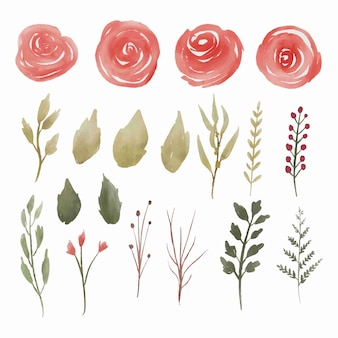 Collection of elements of red watercolor rose