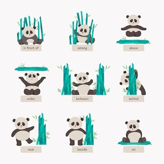 Collection of english prepositions with cute panda