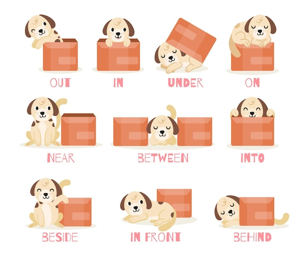 Collection of english prepositions with cute puppy