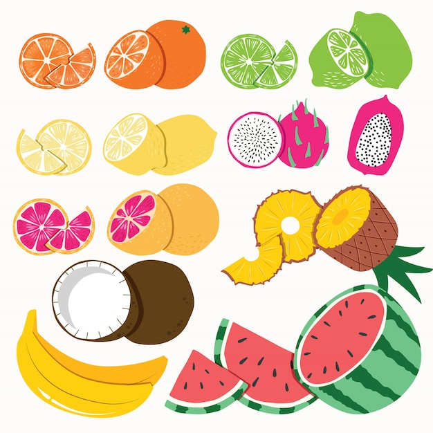 Collection of exotic tropical fruit, isolated on white background. colorful flat vector illustration