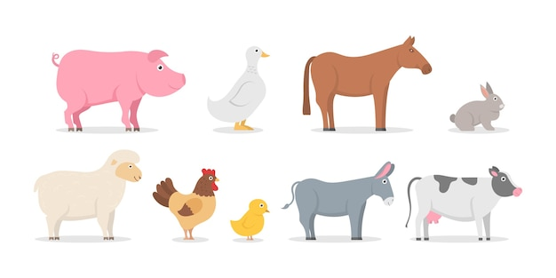 Collection of farm animals and birds in trendy flat style