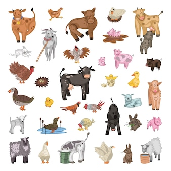 Collection of farm animals and birds