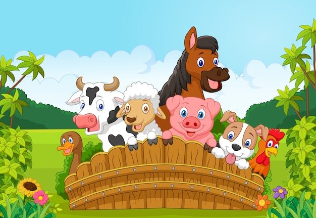 Collection farm animals