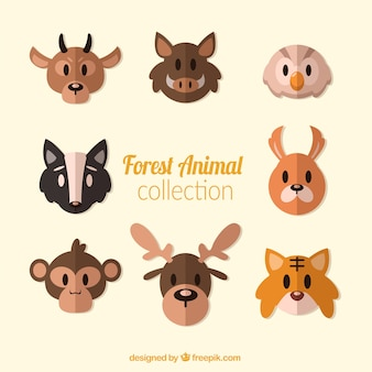 Collection of flat forest animal avatars
