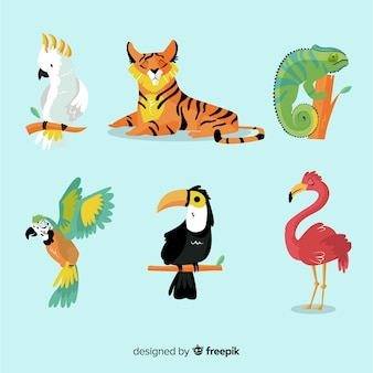 Collection of flat tropical animal