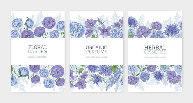 Collection of floral card or flyer templates for herbal cosmetics and natural organic perfume promotion decorated by blooming blue and purple flowers and flowering plants.