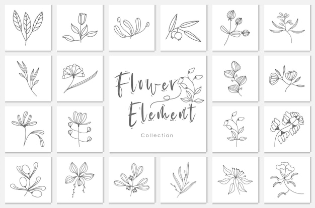 Collection flower element lineart illustration