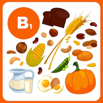 Collection food with vitamin b1.