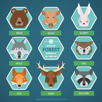 Collection of forest animals in geometric style
