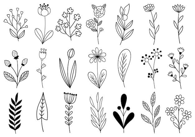 コレクション森のシダユーカリアートの葉自然の葉ハーブラインスタイル
