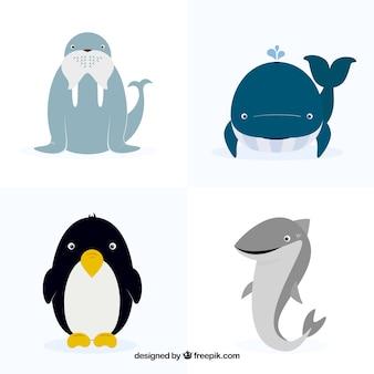 Raccolta di quattro animali piatte