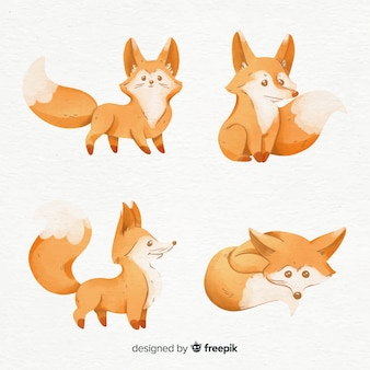 Collection of foxes watercolor style