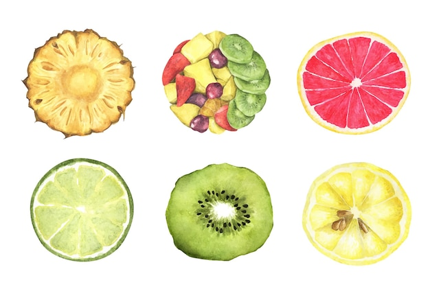 Collection of fresh fruits. top view. watercolor illustration.