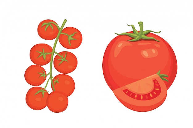Collection of fresh red tomatoes and soup  illustrations. half, slice, cherry tomato.