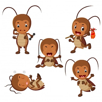 Collection of funny cockroach cartoon