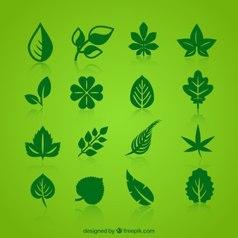Collection of green leaves icons