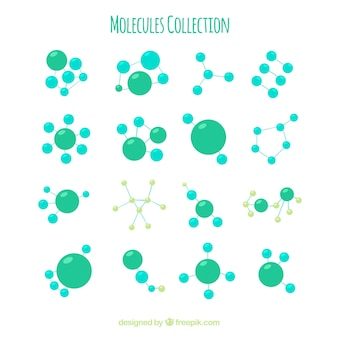 Raccolta di molecola verde