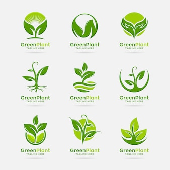 Collection of green plant logo design