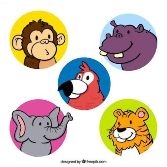 Collection of hand drawn amusing wild animal