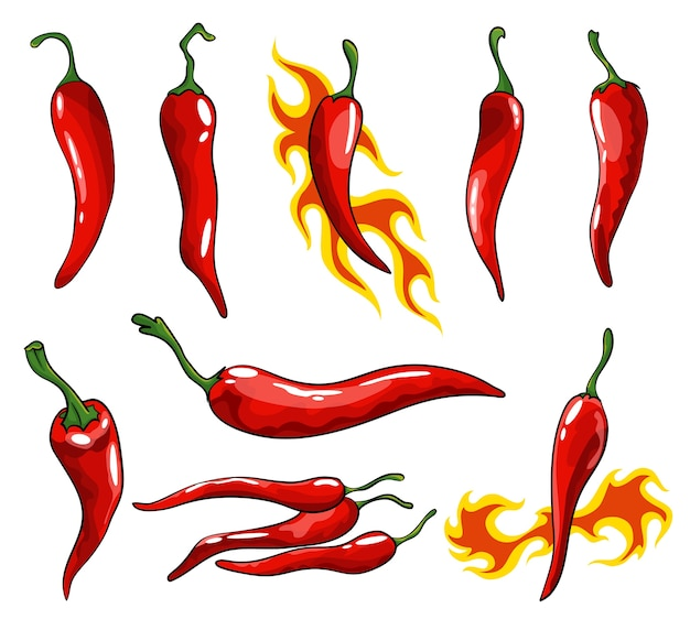 Collection of hand drawn chili peppers. super hot red chilli peppers.